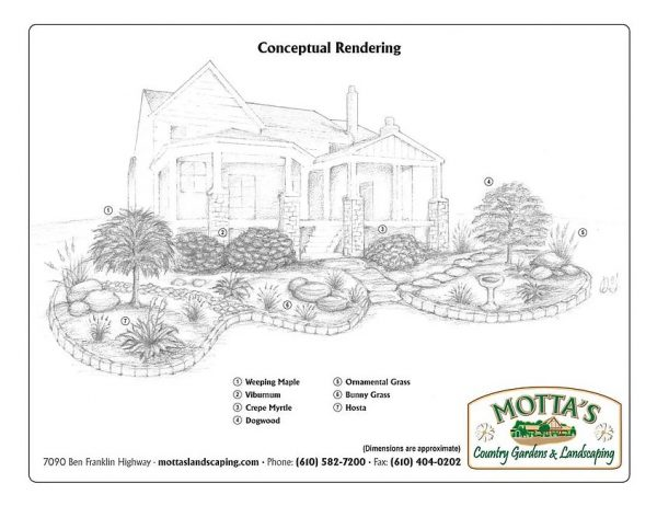drawing of a frontyard concept