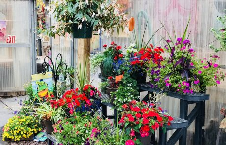 Visit The Garden Center And Gift Shop To Add Beauty To Your Home And Garden. Photo Gallery
