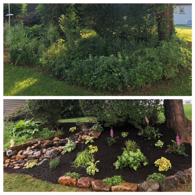 before & after landscaping photos